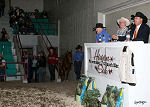 our Hagan Horse Sale auctioneers
